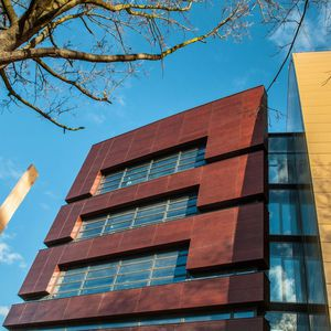 panel cladding / wooden / natural finish / brown
