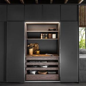 contemporary storage cabinet for kitchen / oak / walnut / eucalyptus