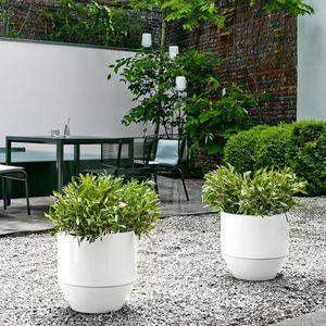 terracotta garden pot