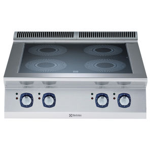 induction cooktop / vitroceramic / commercial / modular