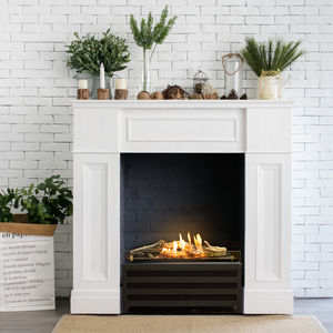bioethanol fireplace insert
