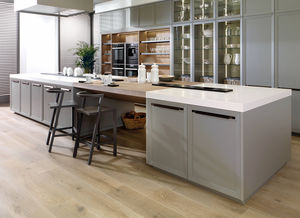 Solid Surface kitchen / contemporary / oak / particle board