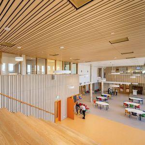 varnished wood ceiling