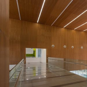 acoustic wall-covering