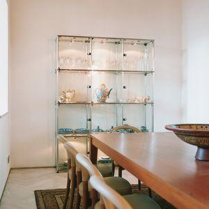 contemporary shelf / metal / glass / living room
