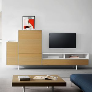 contemporary multimedia cabinet