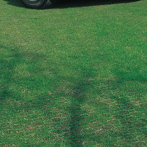 grass tile / drivable / drainage