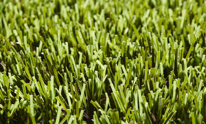 synthetic grass / tile