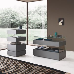 contemporary display case / wood veneer / glossy lacquered wood / matte lacquered wood