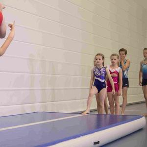 gymnastics landing mat