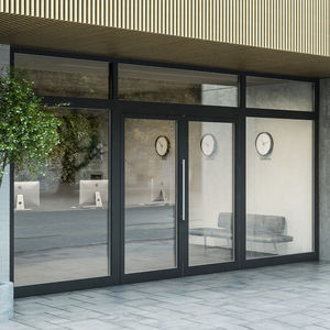 entry door / swing / aluminum / waterproof