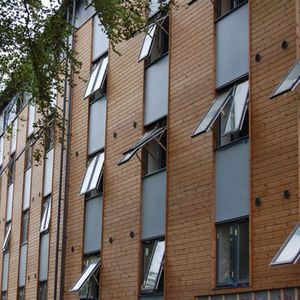 strip cladding / wooden / smooth / painted