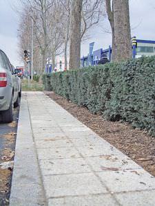 concrete paver / drainage / for public spaces / outdoor