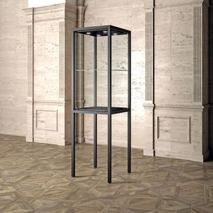 contemporary display case / floor-mounted / glass / metal