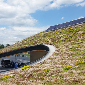 extensive green roof system