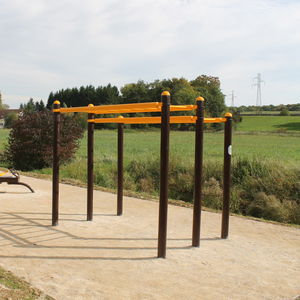 fitness trail ladder / suspension