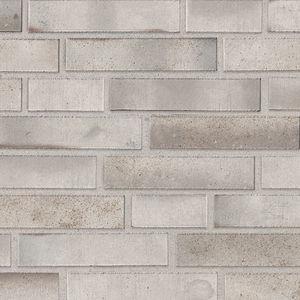 clinker cladding brick / for facade / gray