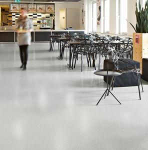 vinyl flooring / interior / non-slip / tertiary
