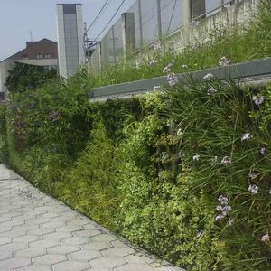 green wall with live plants / modular-panel / natural / garden
