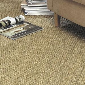 loop pile carpet / woven / natural fiber / tertiary