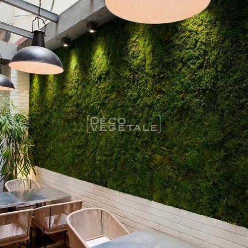 preserved green wall / modular-panel / natural / moss