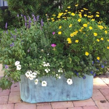 fiberglass planter / oval / contemporary