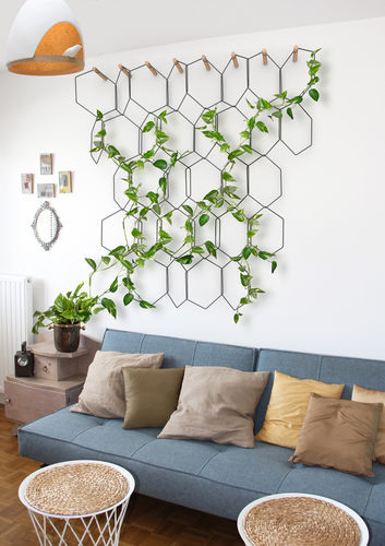 green wall trellis / steel