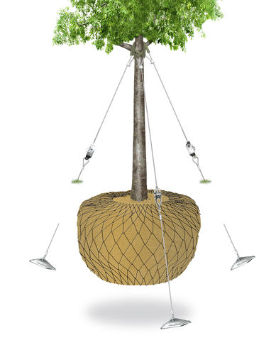 above-ground rootball fixing system
