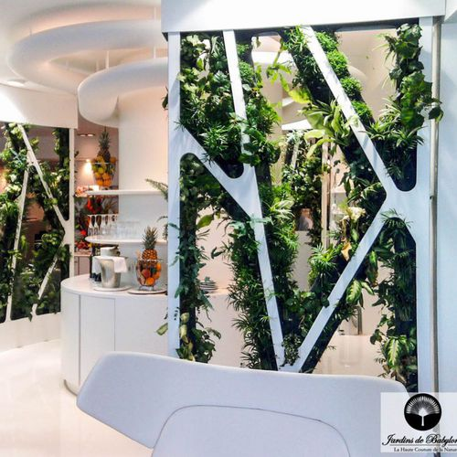 preserved living frame / foliage / moss / indoor