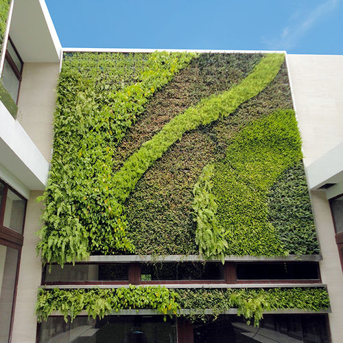 green wall with live plants / modular-panel / custom / natural