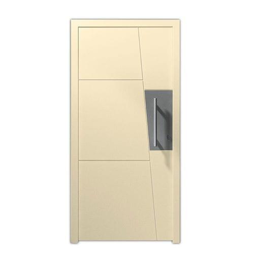 entry door / swing / glass / steel