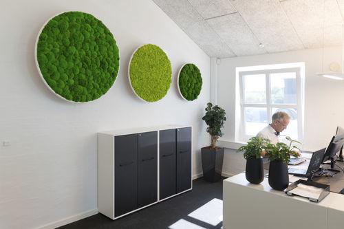 preserved living frame / moss / indoor / modular-panel