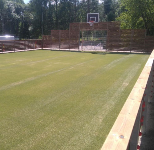 synthetic grass / roll / for athletic fields / multifunctional