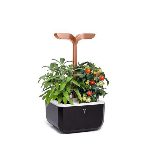 plastic garden planter