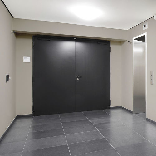 entry door / swing / sheet steel / security