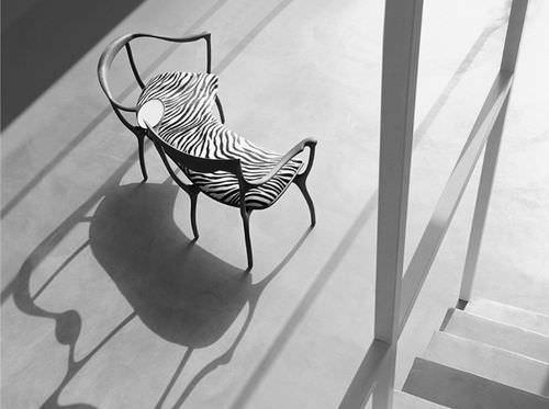organic design bench / walnut / with backrest