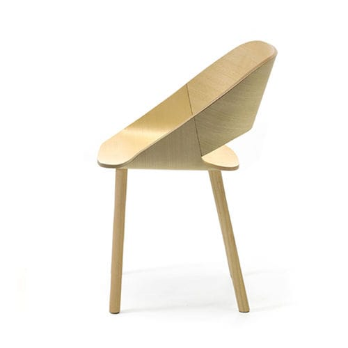 contemporary chair / ash / contract / for hotel