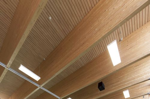 wood structural panel