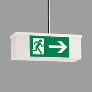 ceiling emergency light / rectangular / fluorescent / plastic