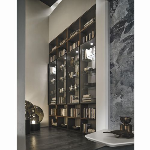 wall-mounted bookcase / contemporary / oak / glass-front