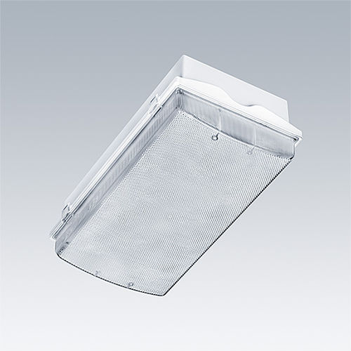 surface mounted emergency light / rectangular / LED / polycarbonate