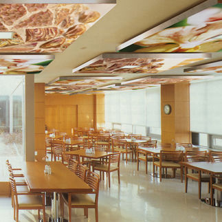 fabric suspended ceiling / floating / acoustic / flame-retardant