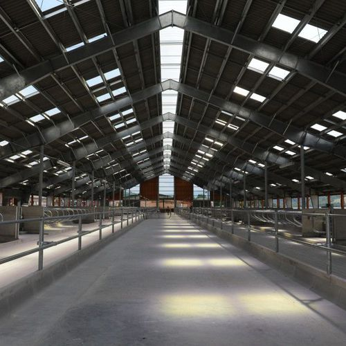 steel structure for industrial buildings / galvanized steel / spatial