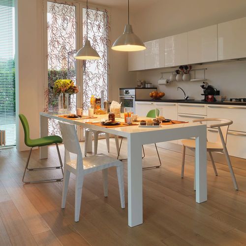 contemporary dining table / oak / lacquered wood / stained wood