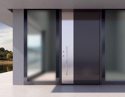 entry door / swing / aluminum / high-resistance