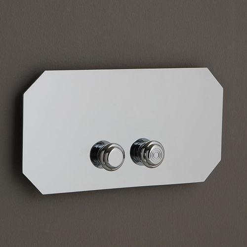 toilet flush button