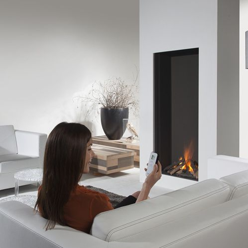 gas fireplace / contemporary / closed hearth / built-in