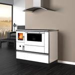 wood-burning cooker
