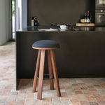 rustic stool / solid wood / fabric / leather