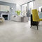 indoor tile / wall / floor / porcelain stoneware